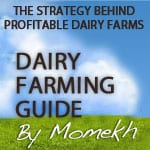 Dairy farming guide by Momekh